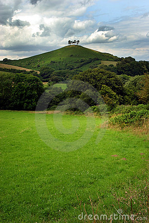 Free Four Trees On A Hill 2 Royalty Free Stock Photography - 12897
