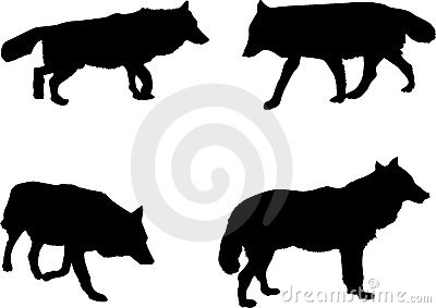 Four wolf silhouettes