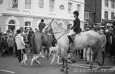Fox hunting protest, England Editorial Photography