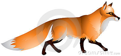 Fox mit dem roten Pelz und einem buschigen Heck