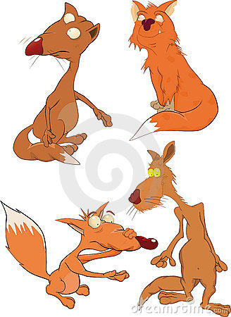 Foxes the complete set
