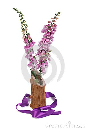 Foxglove flowers in a vase and a purple ribbon