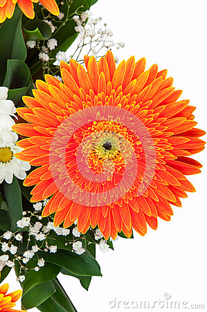 Fragment of bouquet of gerberas