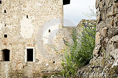 Fragment of the castle wall
