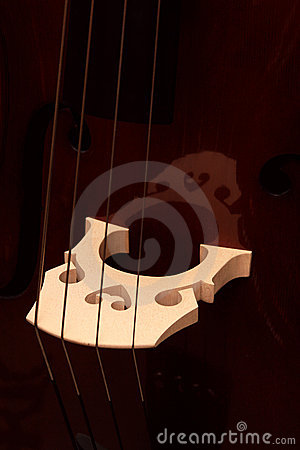 Fragment of a contrabass