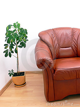 Free Fragment Of Brown Armchair Stock Photo - 7062170