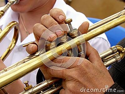 Fragment of trumpet