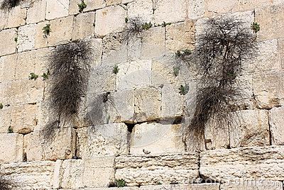 Fragment of the Wailing Wall in Jerusalem