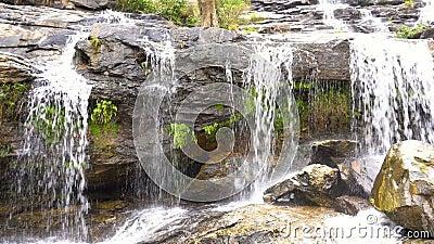 Fragmente a cascata de Mae Ya Waterfall no parque nacional do inthanon de Doi, região de Chiang Mai, Tailândia, capaz de dar laço vídeos de arquivo