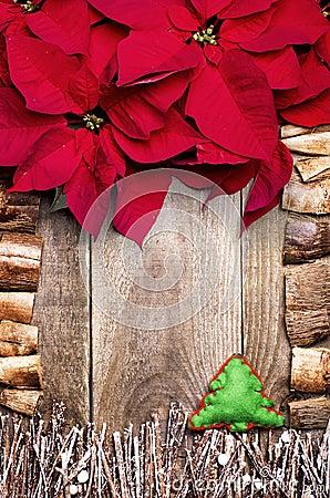 Frame arranged from poinsettia flowers sticks twigs for Poinsettia christmas tree frame