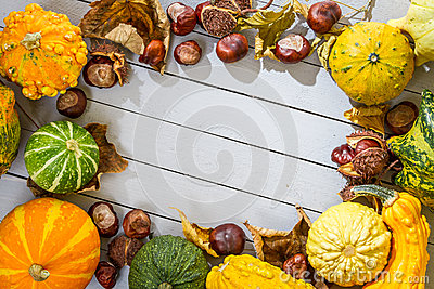 The frame of the autumn harvest placed