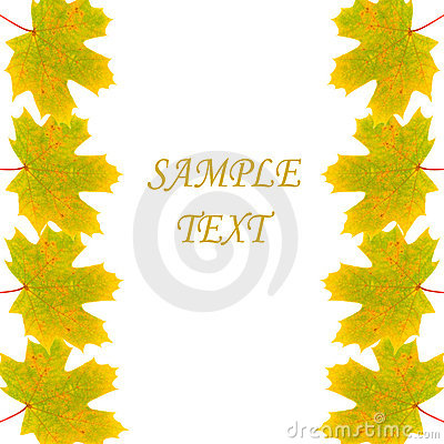 Frame of autumn maple leaves