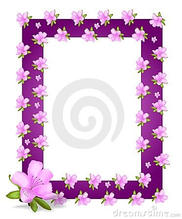 Frame with azaleas, cdr vector