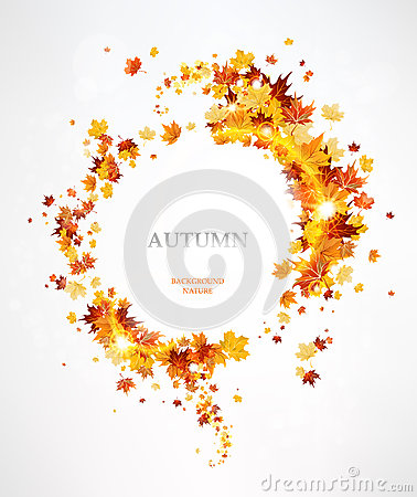 Frame with the beautiful autumn leaves