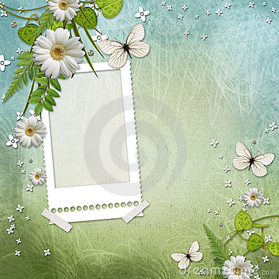 Frame with beautiful daisy