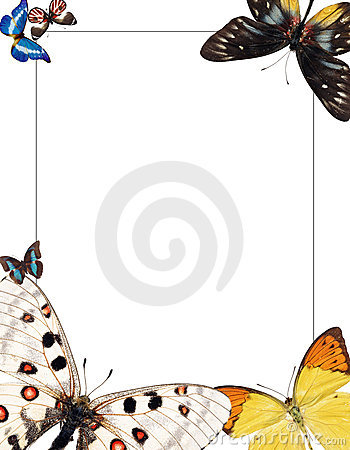Frame with butterflies for photomontage