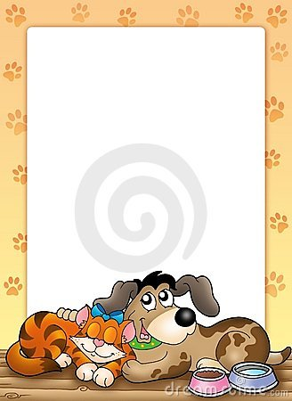 Frame with cute cat and dog