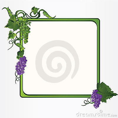 Frame with grapes leaves and vine