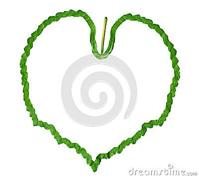 Frame of the green leaf