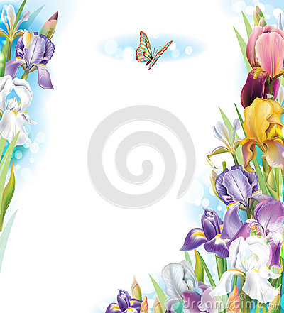 Frame with Iris flowers Vector Illustration