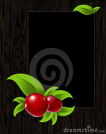 Frame with leaves and berry