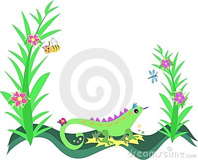 Frame of Lizard, Plants and Flowers