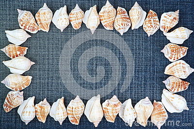 Frame made ​​of shells on the jeans.