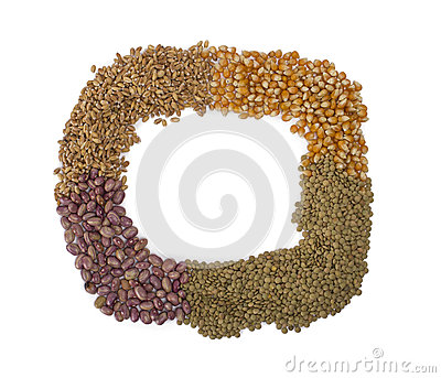 Frame made from grains and seeds