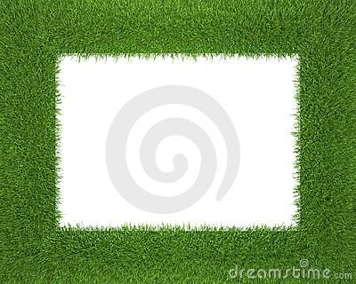 Frame made of grass isolated on white background