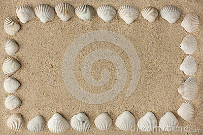 Frame made of sea shells on the sand