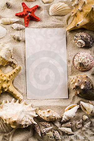 Frame made from shells