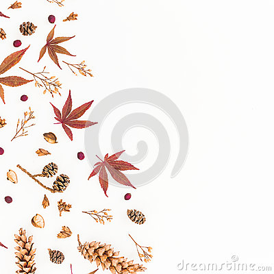 Free Frame Of Autumn Leaves, Dried Flowers And Pine Cones Isolated On White Background. Flat Lay, Top View, Copy Space. Royalty Free Stock Photos - 98689578