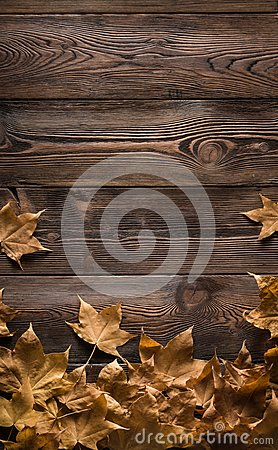 Free Frame Of Autumn Leaves On Wooden Boards Stock Images - 101348394