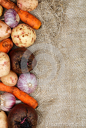 Free Frame Of Vegetables Royalty Free Stock Photos - 28119188