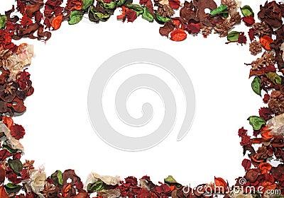 Frame of petals