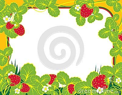 Frame strawberry