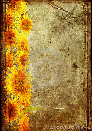 Frame from  sunflower grunge