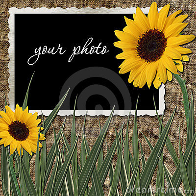 Frame with sunflowers