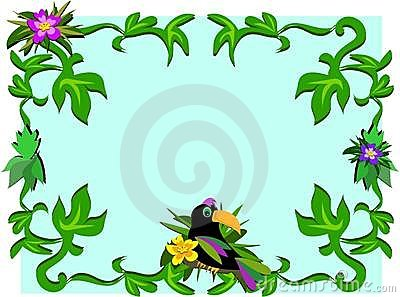 Frame of Toucan, Plants, and Hibiscus