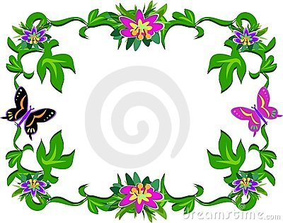 Frame of Tropical Plants and Butterflies