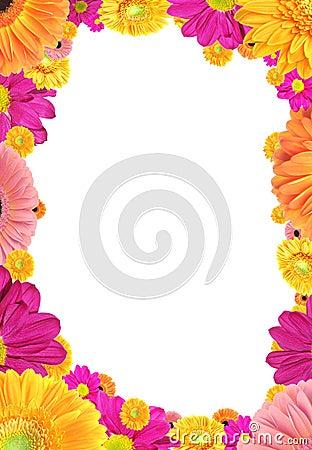 Frame van kleurrijke bloemen.
