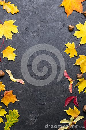 Free Frame With Autumn Maple Leaves. Nature Fall Template For Design, Menu, Postcard, Banner, Ticket, Leaflet, Poster. On Dark Backgr Royalty Free Stock Images - 128335459
