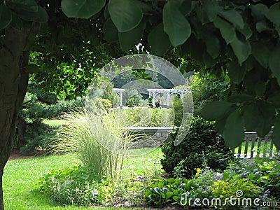 Framed lawn garden