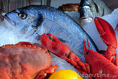 France, Nice: French Riviera fish