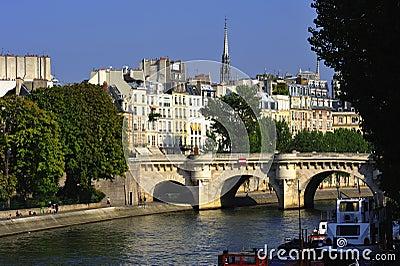 France Paris: view of Ile de la cite