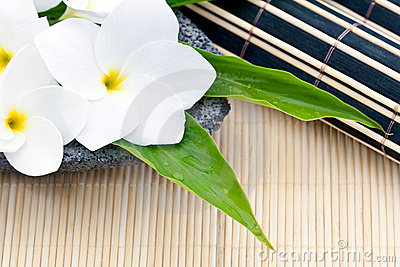 Frangipani And Bamboo Royalty Free Stock Image - Image: 13688406