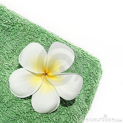 Frangipani flower on towel isolated on white