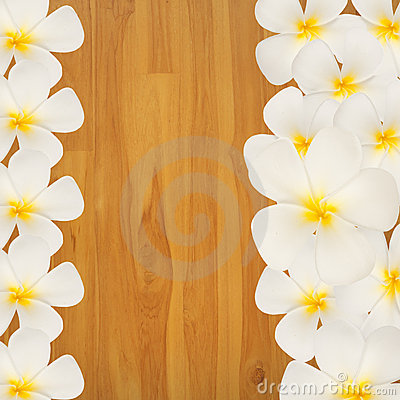 Frangipani  Plumeria flower on wood background