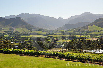 Franschhoek winelands  cape south africa