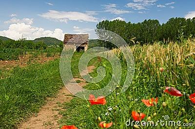 Französische Landschaft